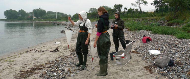 Im ozean:labor setzen sich Schülerinnen und Schüler der 3. bis 13. Klasse mit aktuellen Themen aus der Meeresforschung auseinander.