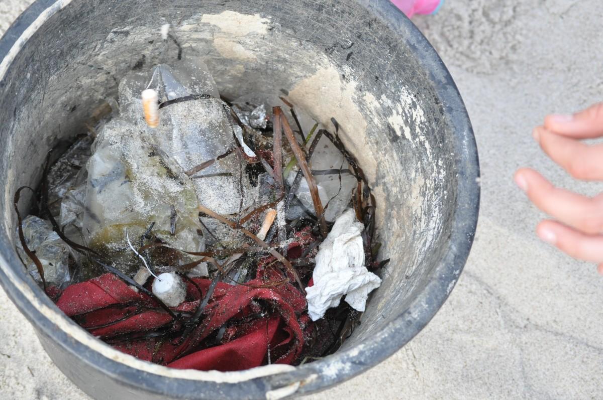Am dritten Samstag im September findet weltweit der Coastal Cleanup Day statt