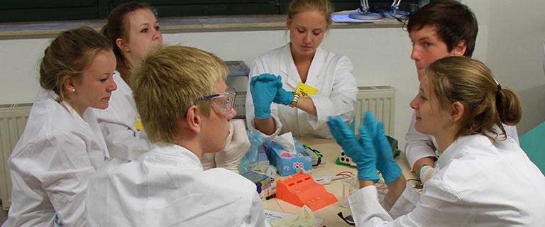 Eine Schulklasse experimerntiert im life:labor der Kieler Forschungswerkstatt