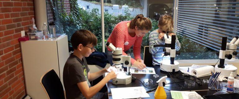 Im geo:labor wird der Lebensraum Boden untersucht
