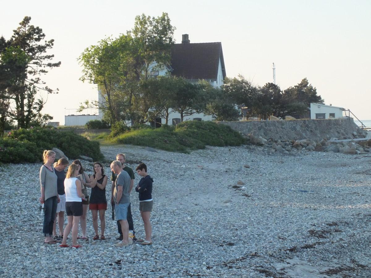 Das Ökosystem Ostsee steht im Fokus der dreitägigen Lehrerfortbildung auf der Lotseninsel Schleimünde