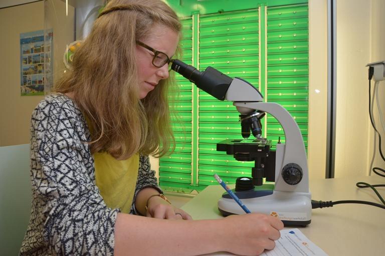 Schuelerin beim Mikroskopieren im Bereich Nachmittags- und Ferienangebote