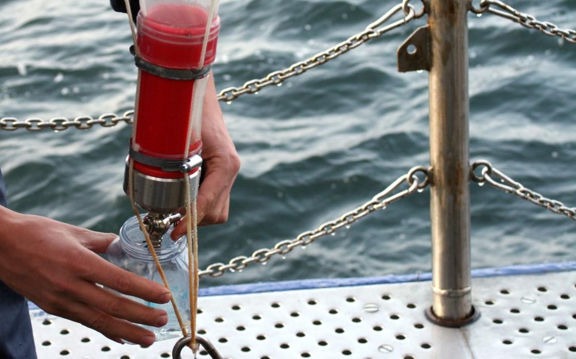 In der Sommerakademie untersuchen wir täglich von 9 bis 14 Uhr spannende Forschungsfragen rund um das Thema Ozean