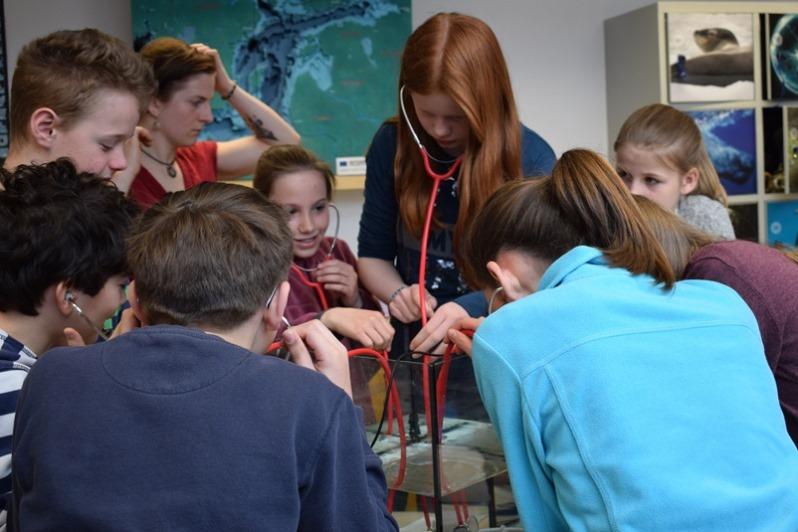 Die Teilnehmerinnen und Teilnehmer der Ferienakademie machen in der Kieler Forschungswerkstatt Experimente zum Thema Lärmverschmutzung unter Wasser.