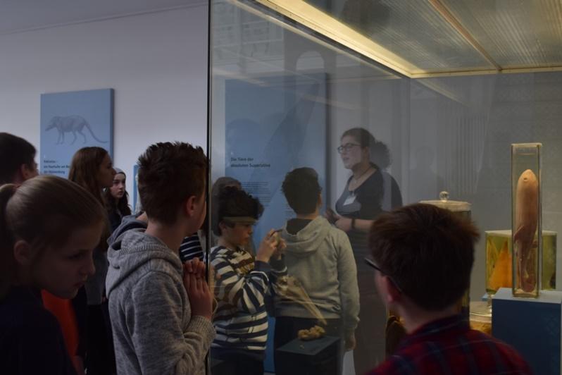 Die Teilnehmenden der Ferienakademie bei einem Besuch im Zoologischen Museum Kiel.