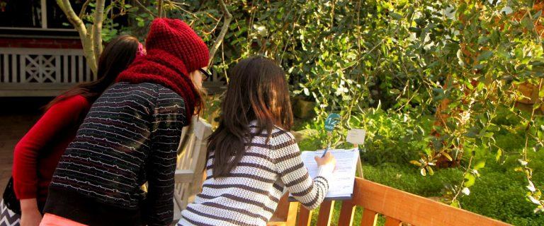 Schülerinnen und Schüler begeben sich mit dem geo:labor auf eine Zauberreise durch den Botanischen Garten Kiel