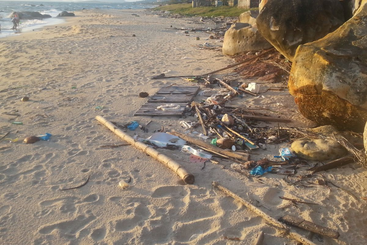 In dem Webinar der Kieler Forschungswerkstatt dreht sich alles um das Thema Plastikmüll