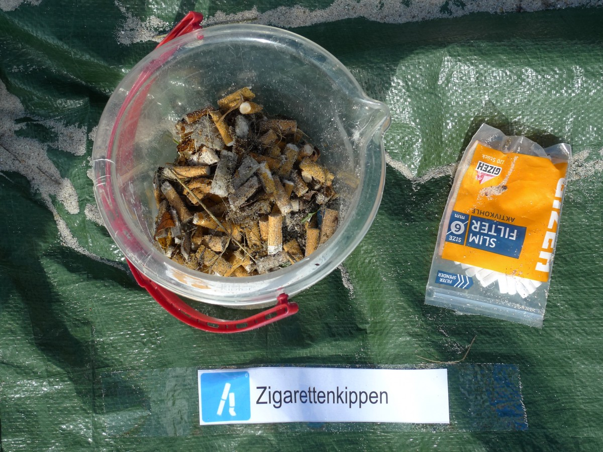 Coastal Cleanup in Kiel
