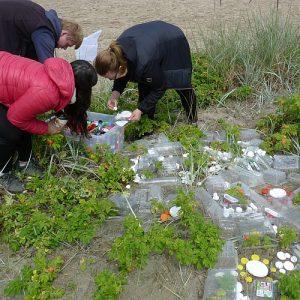 Environmental Art am Strand