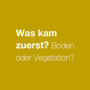Boden in SH: Was kam zuerst?