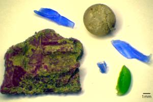 Die Plastic Pirates sammeln Mikroplastikproben an und in Flüssen