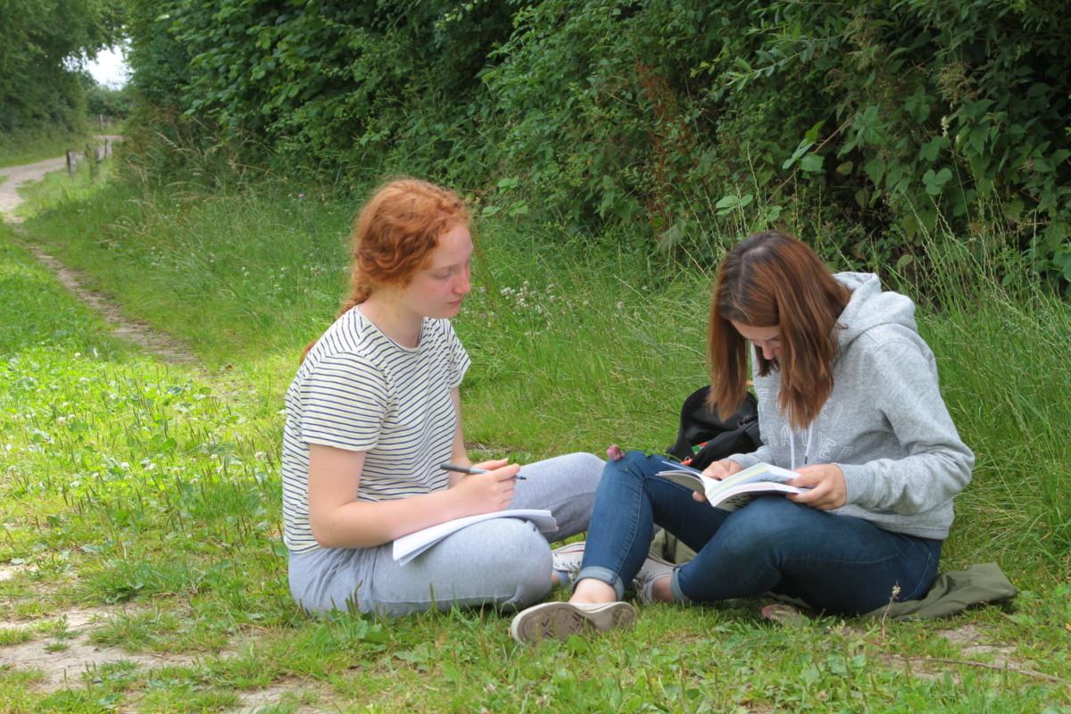 Zwei Schülerinnen bei der Bestimmung von Insekten