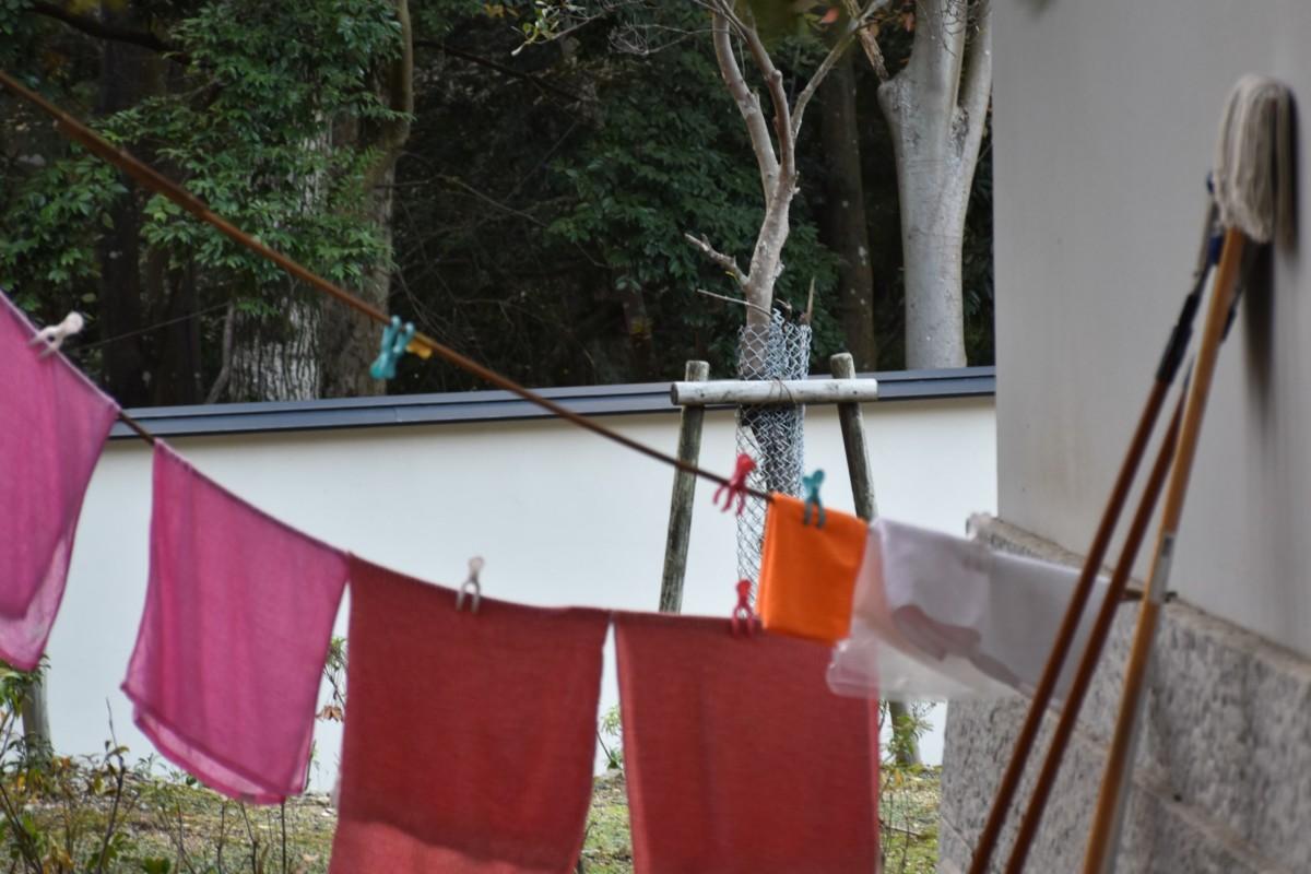 Im Online-Angebot Oh Schreck, ein Fleck! untersuchen Schülerinnen und Schüler auch die Wirksamkeit verschiedener Waschmittel